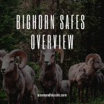 Bighorn Safes Overview