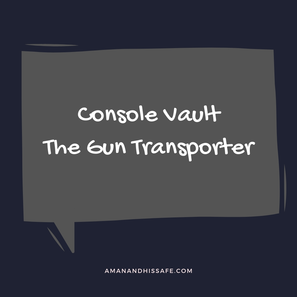 The Gun Transporter by Console Vault
