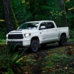 All The Different Types Of Pickup Truck Cabs [Complete Guide]